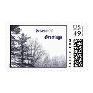Snow-covered Trees: Horizontal – Medium Postage Stamp