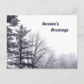 Snow-covered Trees: Horizontal Postcard