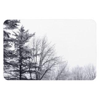 Snow-covered Trees: Horizontal Rectangular Photo Magnet