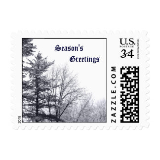 Snow-covered Trees: Horizontal – Small Postage