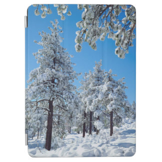 Snow-covered trees in the Laguna Mountains iPad Air Cover