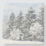Snow-covered Trees/ Marble Stone Coaster at Zazzle