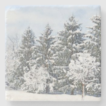 Snow-covered Trees/ Marble Stone Coaster by whatawonderfulworld at Zazzle