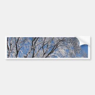 Snow Covered Trees Photograph Square Bumper Sticker
