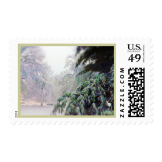 Snow Covered Trees, Pine on KC Street Postage Stamps