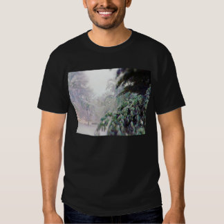 Snow Covered Trees, Pine on KC Street Shirt