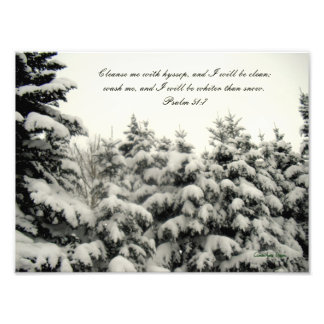 Snow Covered Trees Print