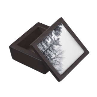 Snow-covered Trees: Vertical Gift Box