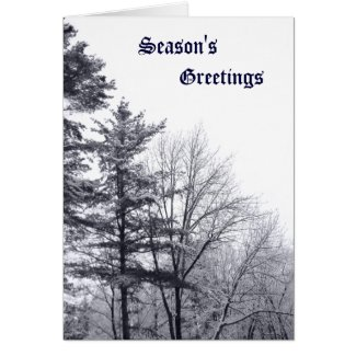 Snow-covered Trees: Vertical Greeting Cards