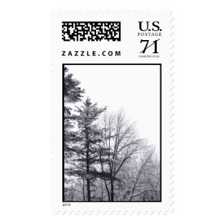 Snow-covered Trees: Vertical – Large Stamp