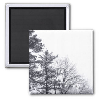 Snow-covered Trees: Vertical Magnet
