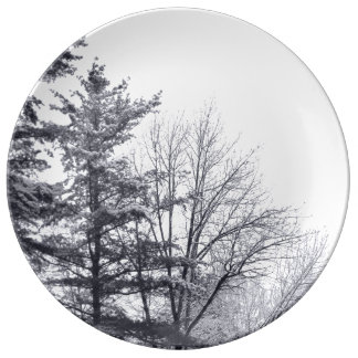 Snow-covered Trees: Vertical Plate