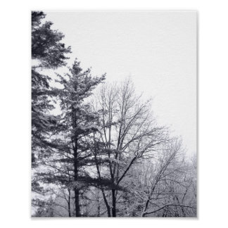 Snow-covered Trees: Vertical Poster