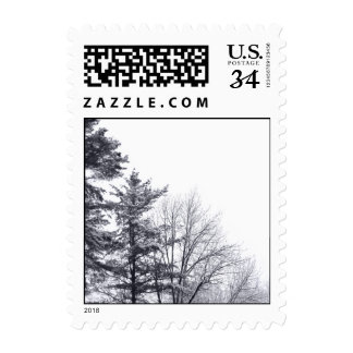 Snow-covered Trees: Vertical – Small Postage