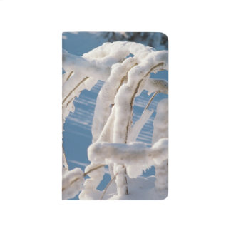 Snow Covered Winter Branches Seasonal Scenic Photo Journal