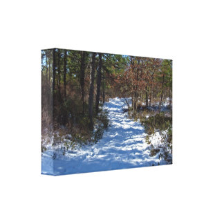 Snow Covered Woodland Path Canvas Print