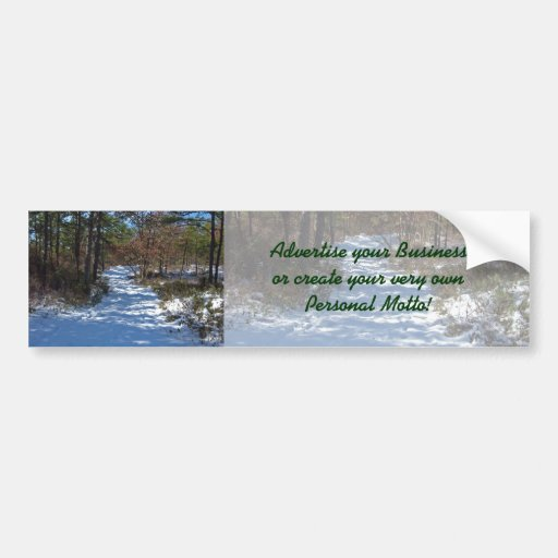 Snow Covered Woodland Path in Winter Bumper Stickers