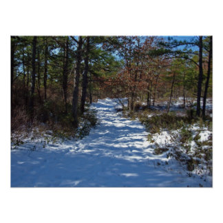 Snow Covered Woodland Path in Winter Print