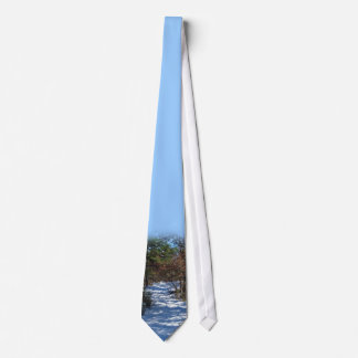 Snow Covered Woodland Path Tie