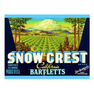 Snow Crest Postcards