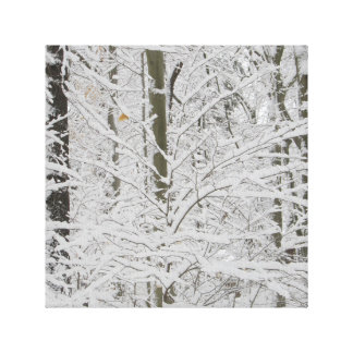 snow day in new england woods canvas print