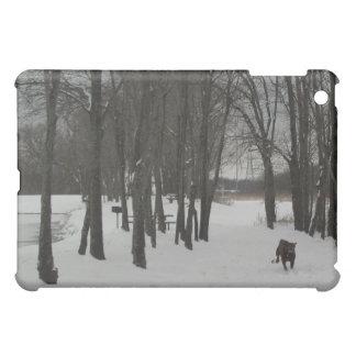 Snow day in Texas Feb 4 2011 iPad Mini Cases