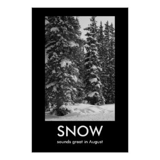 SNOW Demotivational Poster