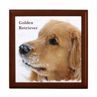 Snow Dog Golden Retriever Trinket Box