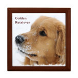 Snow Dog Golden Retriever Jewelry Box at Zazzle