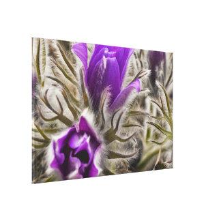 Snow Drops Purple Flower Canvas Print