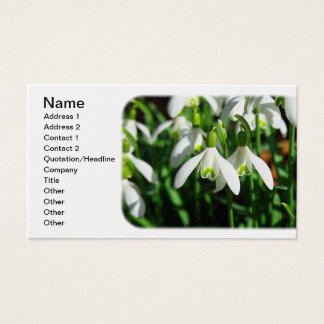 Snow Drops - Winter Blooming Bulb Flowers Business Card