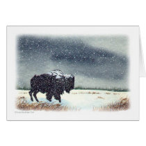 Snow Dusted Bison Watercolor Card