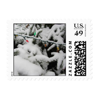 Snow Dusted Branches and Lights Postage