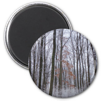 Snow Dusted Forest Winter Landscape Photography 2 Inch Round Magnet