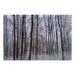 Snow Dusted Forest Winter Landscape Photography Poster