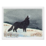 Snow Dusted Wolf Watercolor Painting Poster