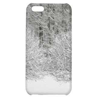 Snow ed landscape iPhone 5C covers