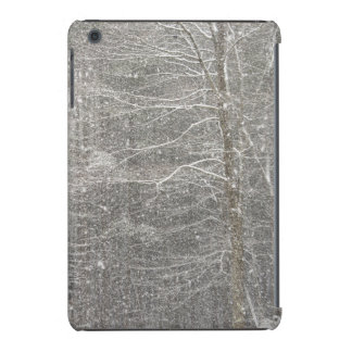 Snow Falling iPad Mini Covers