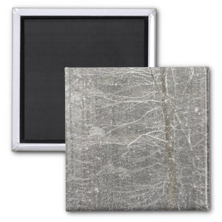 Snow Falling 2 Inch Square Magnet