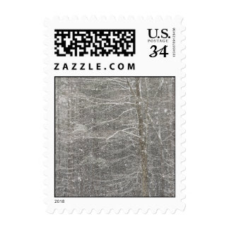 Snow Falling Postage Stamps