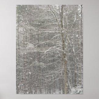 Snow Falling Print