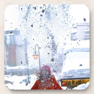 Snow fight france coasters