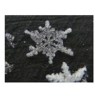 Snow Flake 56 ~ postcard