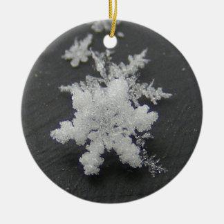 Snow Flake 73 ~ ornament
