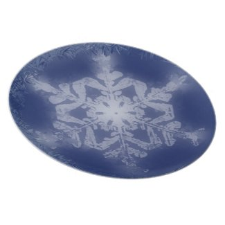 Snow Flake 8 Plate plate