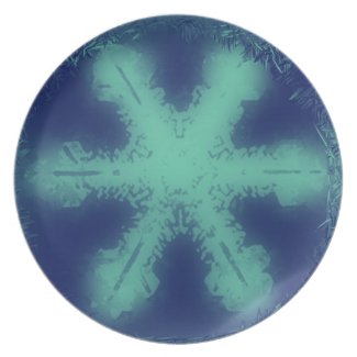 Snow Flake 9 Plate plate