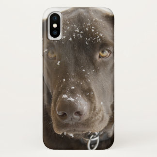 Snow Flake Covered Chocolate Lab Photo Close Up iPhone X Case