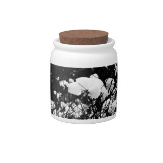 Snow Flaked Paradise Candy Dish