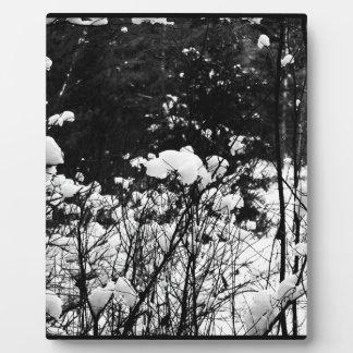 Snow Flaked Paradise Plaque