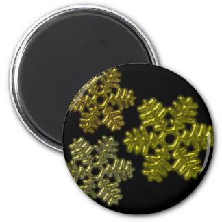 Snow Flakes 3D Pattern Design Magnet